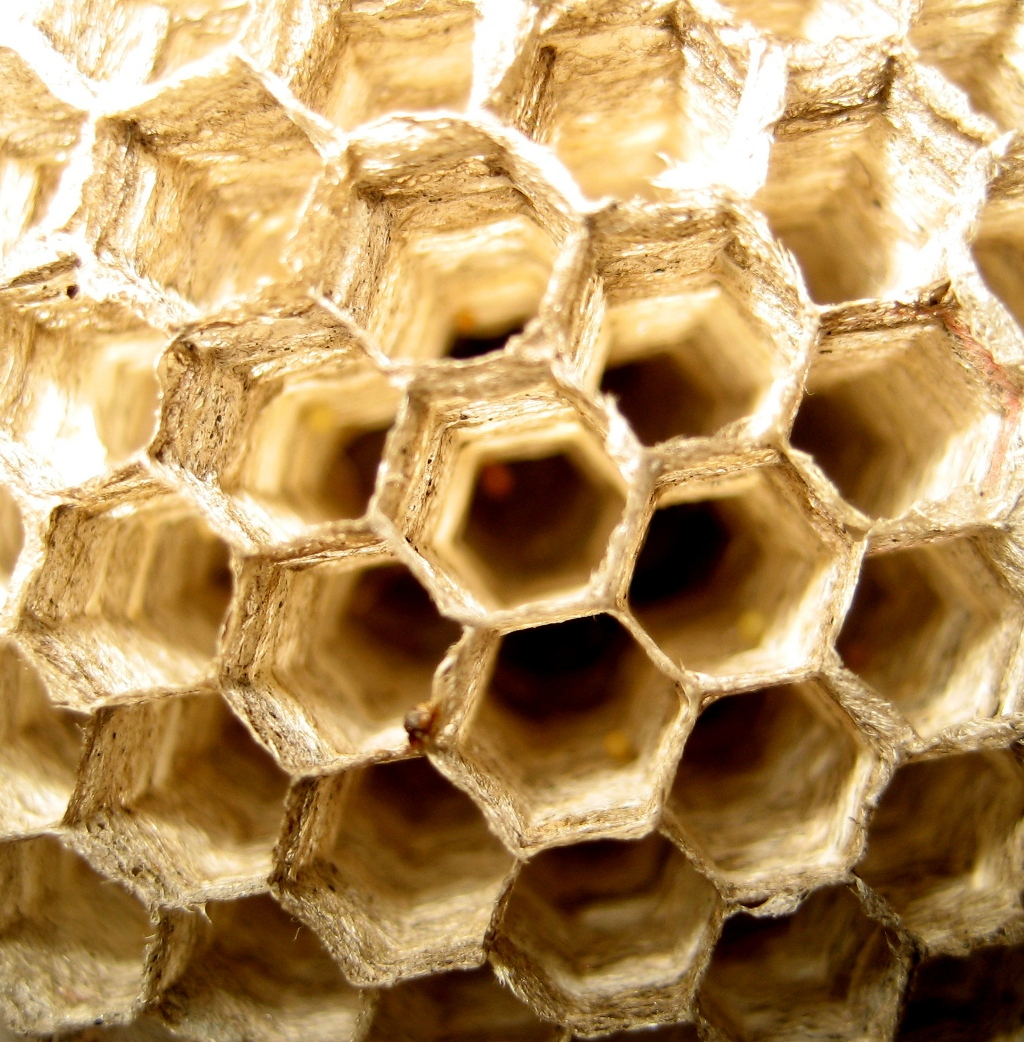 Panal avispas-hexagonos ceramicos-ceramica a mano alzada