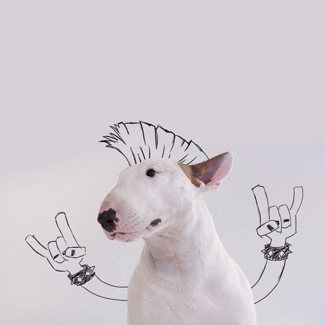 dog-interactive-illustrations-jimmy-choo-rafael-mantesso-ceramica-a-mano-alzada
